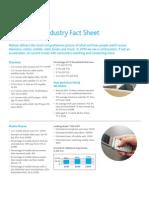 Nielsen Fact Sheet 2010