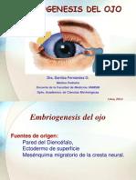 Embriogenesis Del Ojo 2014