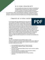 Desarrollo de La Visión, Dirección, Metas y Estrategias de Los SI