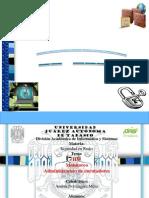 IDS (Sistema de detención de intrusos)
