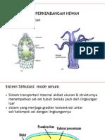sirkulasi1.pdf