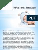 Dezvoltarea intrauterina a bebelusului.ppt