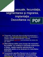 4.celulele sexuale primul curs E.pdf