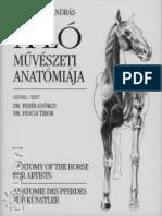 A ló művészeti anatomiája.pdf