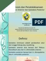 Diagnosis Dan Penatalaksanaan Epistaksis Anterior Dan Epistaksis Posterior