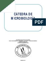 2DO AÑO MEDICINA 2013-MICROBIOLOGIA.pdf