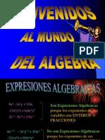 DIA_POSITIVA_-_EXPRESIONES_ALGEBRAICAS_ (1)(1)