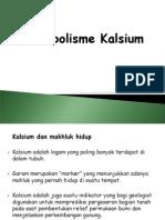 (11). Biokimia - METAB KALSIUM 3Des12.ppt