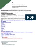 Bacteria, Protist, Virus Notes