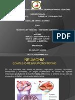 Clinica Especies Mayores