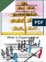 Organization Structure 03