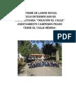 Ejemplo Informe Labor Social