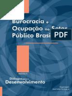 burocracia ocupacao publica ipea.pdf
