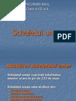 Sche Let Ulu Man