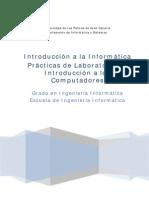 Libro Practicas Introduccion a Informatica