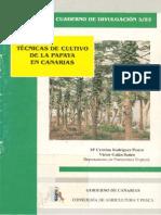 CULTIVO DE PAPAYA.pdf