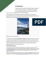 sustentabilidad para sabado2014.docx