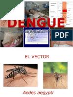 Dengue 2014