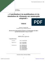 Mémoire Morphologie Du Corps Modélisation