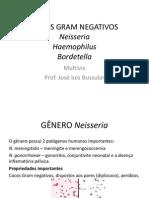 COCOS GRAM NEGATIVOS.pdf
