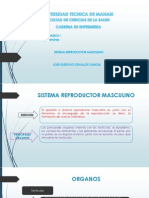 Sistema Reproductor Masculino (enfermedades)