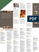 PUM flyer
