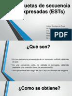 Etiquetas de Secuencia Expresadas (ESTs)