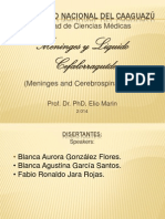 Meninges y LCR 2014.pptx