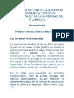 1DERECHOS_FUNDAMENTALES_CONTENIDO