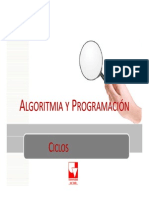 AYP-C5-Ciclos1_V3