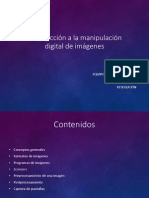 INTRO A MANIPULACION DIGITAL.pdf