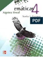 Matematicas Algebra Lineal
