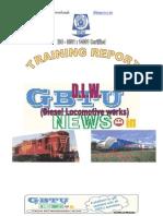 summer-traning-dlw-report.pdf