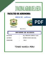 INFORME DE ACODOS.doc