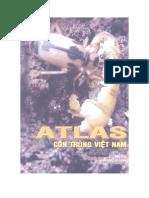 Côn trùng Việt Nam - Tập 1 - Côn trùng gây hại và thiên địch của chúng trên cây thực phẩm