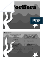 Porifera (full version).pdf