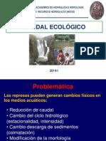 7-HH333-Clase Caudal Ecologico.pdf