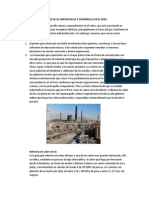 Analisis de Su Importancia y Desarrollo en El Peru