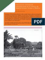 Roson Lorente, Cultura Oral Patrimonio Inmaterial