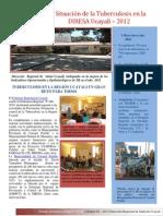 Boletin II semestre 2012 ESR PCT DIRESA Ucayali.pdf