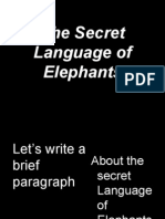 The Secret Language of Elephants Practice Exercise