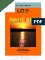 SHAMANIC WAKE UP THE HEALER  2014 Folder