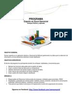 Programa Experto en Excel Gerencial-2