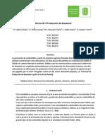 Informe N°4 Produccion de bioetanol