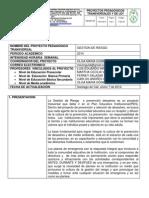 2014 PROYECTOS TRANSVERSALES.docx