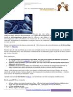 Cómo Preparar Una Mezcla Beneficiosa de Microorganismos Para El Suelo