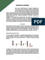 APOSTILA-GENETICAECANCER.doc