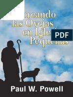 Pastoreando Las Ovejas en Iglesias Pequeñas - Paul W. Powell
