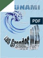 Tsunami Las Grandes Olas