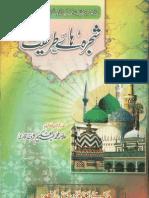 shajra-ha-e-tareeqat-by-allama-muhammad-abdul-hakeem-sharaf-qadri-good